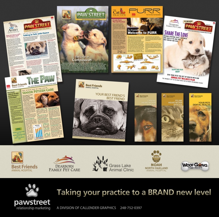Paw-Brand-Services-Ver-2-web